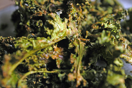 kale up close on plate darker