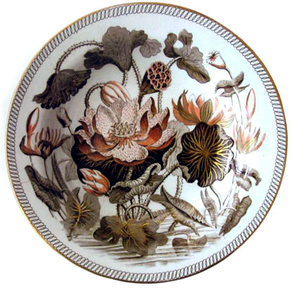 Wedgewood's Water Lily pattern which the Darwin's used