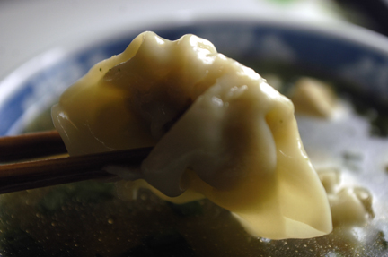 wonton up close