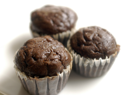 Chocolate Protein Mini Muffins