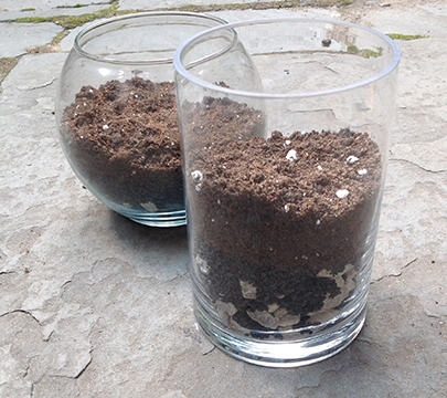 soil and rocks