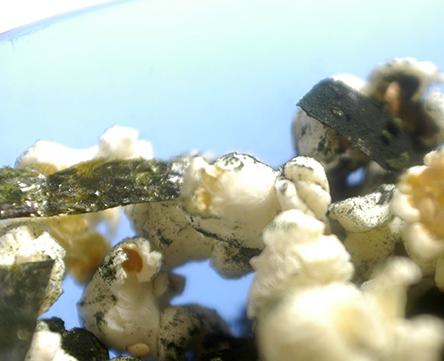 spiralina popcorn 1